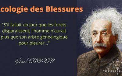 Écologie des Blessures