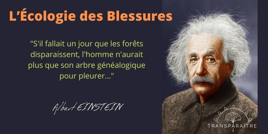 L'écologie des Blessures