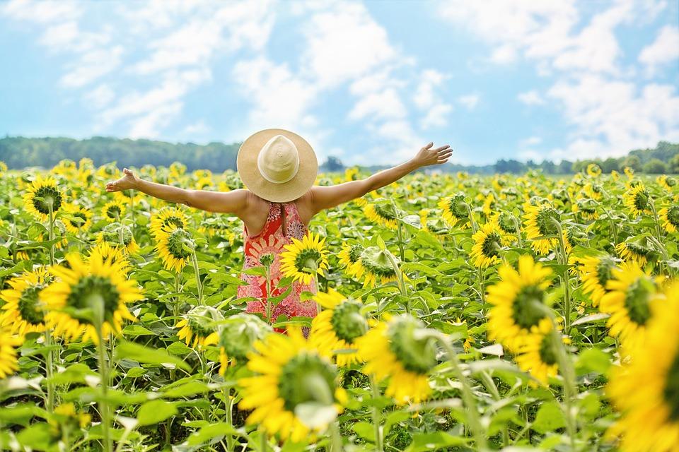 énergétique - connexion nature - fleurs de bach - laurence HERITIER - lyon - villeurbanne